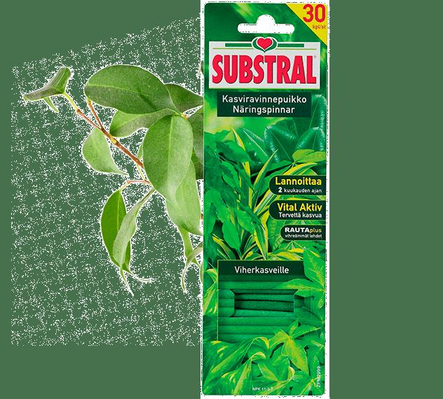 Substral kasviravinnepuikko viherkasveille